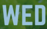 Wellness Wednesday - February 5 , 2020